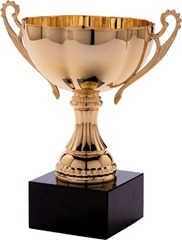award-trophies-trophy2-788652